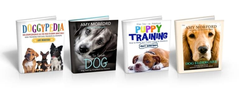 Amy Morford Dog Books