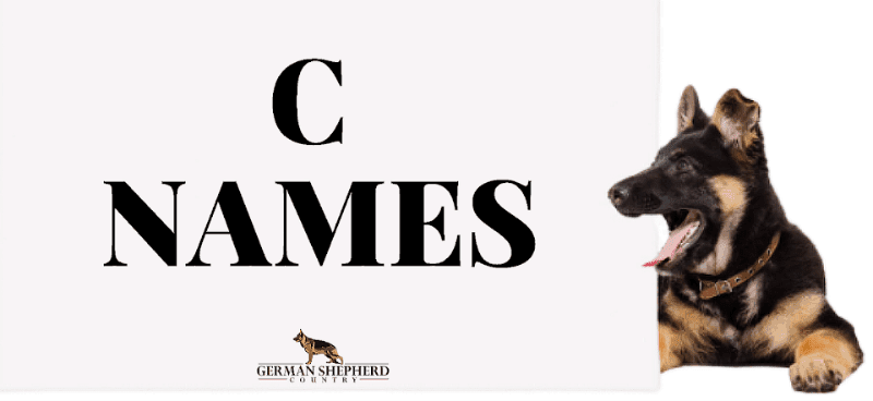 dog names that start with c
