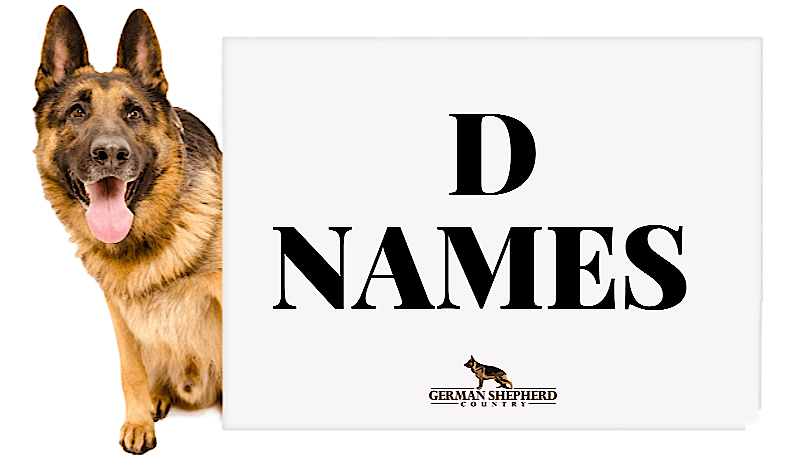 dog names that start with d