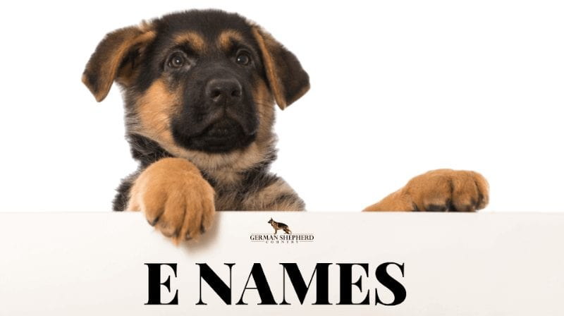 dog names that start with e