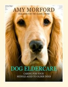 Dog Eldercare: Caring For Your Middle-Aged to Older Dogs