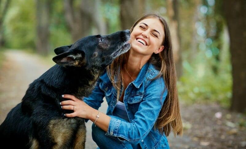 German Shepherd and Woman